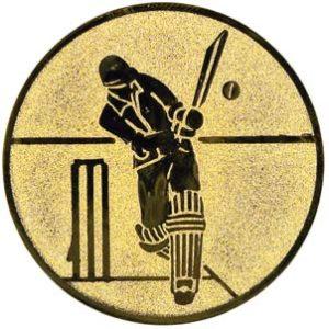 112-cricket