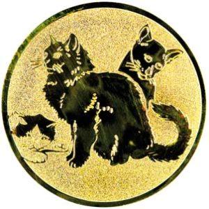 153-katten