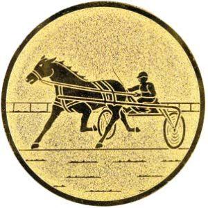 157-paarden